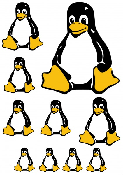 Maxi-Sticker - Pinguin A4